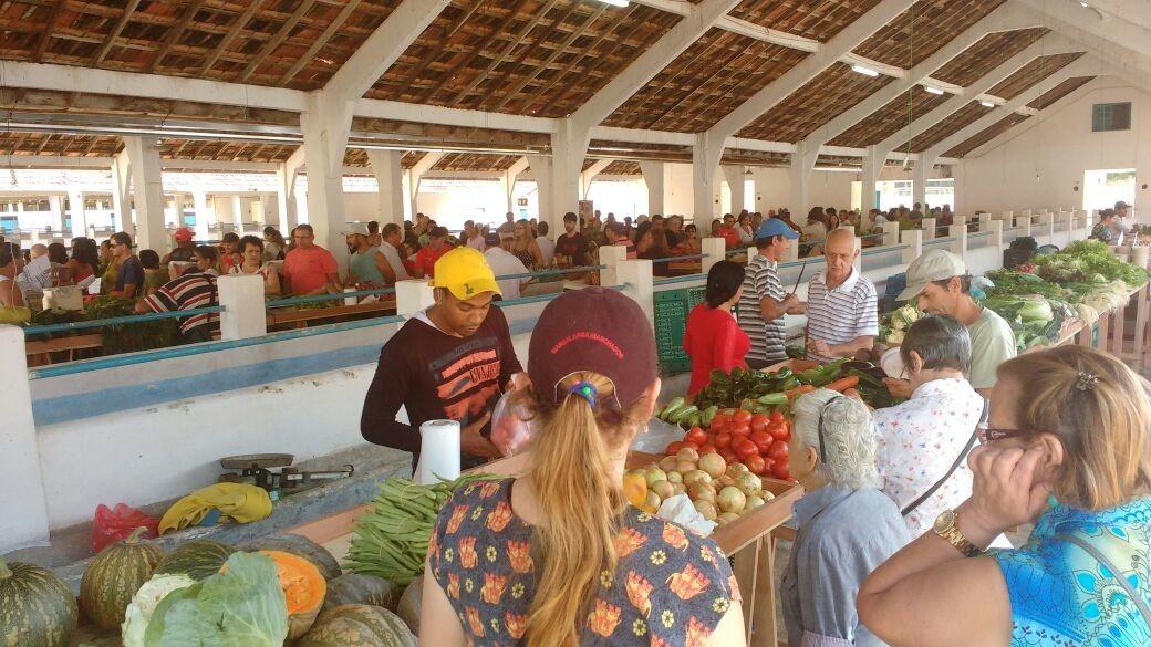 Feira do Produtor Rural é iniciada com sucesso em Cordeiro